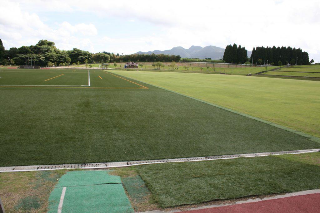 丸山自然公園人工芝コート